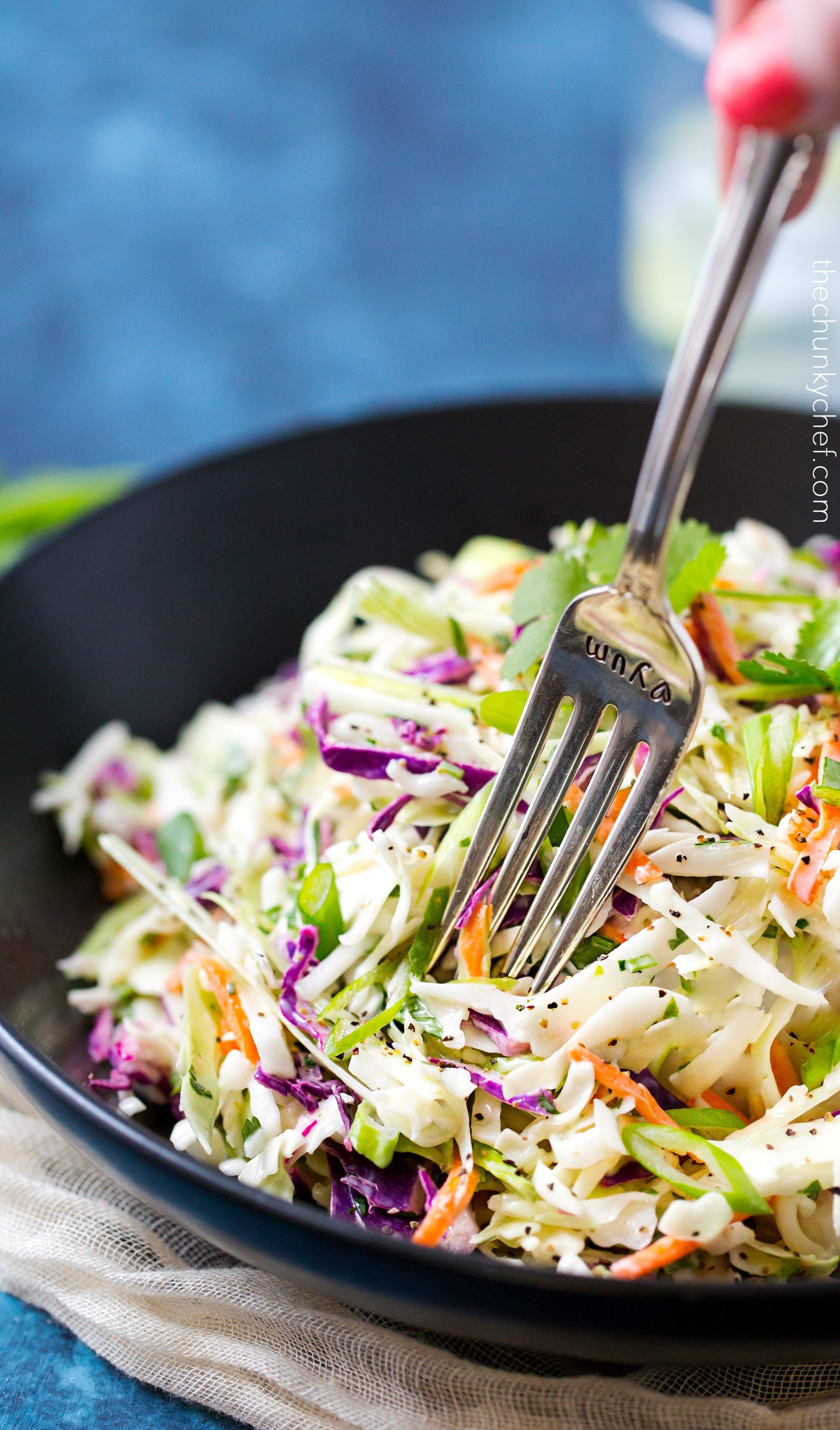 5 minute tequila lime coleslaw with cilantro the chunky chef tequila lime coleslaw with cilantro this unique coleslaw recipe combines great mexican flavors like tequila forumfinder