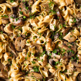 Hearty One Pot Chicken Stroganoff   Great classic stroganoff flavors with savory chicken, made easy in one pot! Dinner is ready in 30 minutes, which is perfect for weeknights or back to school!   http://thechunkychef.com