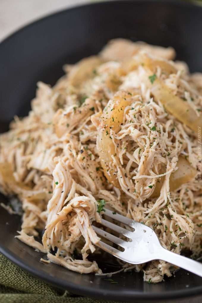 Forkful of crockpot shredded chicken