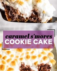 pin image for s'mores cookie cake