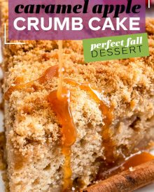 This Caramel Apple Crumb Cake is the perfect Fall dessert! Perfectly spiced, with tender apples, rich caramel, moist cake and a crumbly top! #apple #cake #applecake #dessert #baking #Fall #crumbcake #caramel #caramelapple