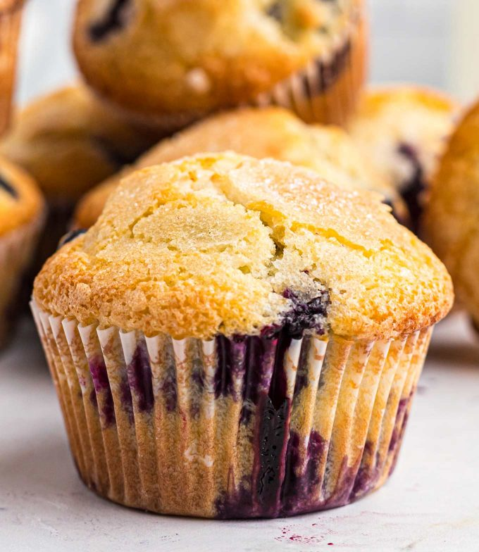 closeup photo of blueberry muffin