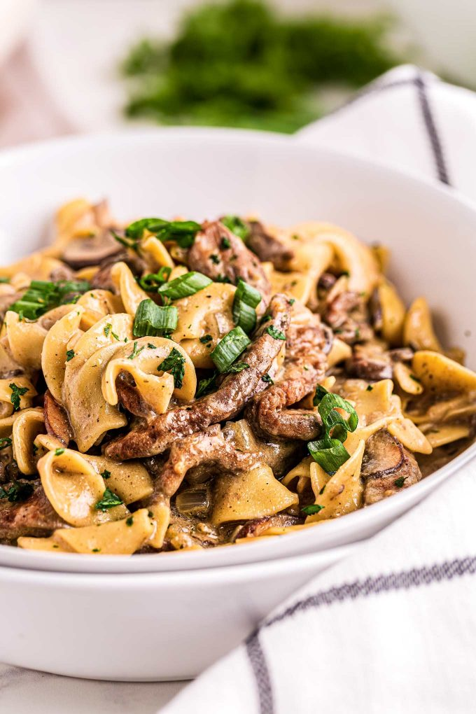 stroganoff in white bowl with beef