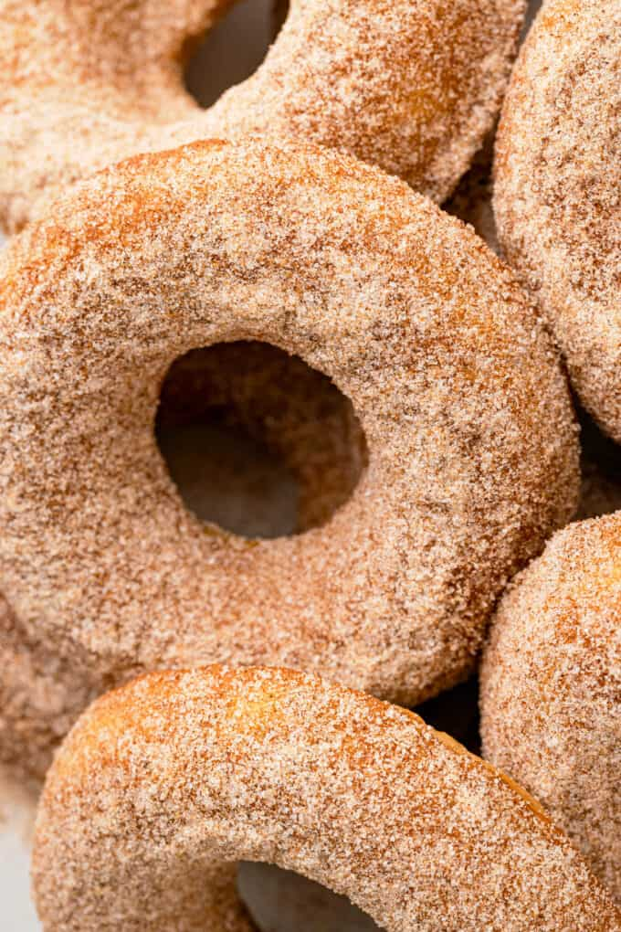 close up of apple cider donut with cinnamon sugar topping
